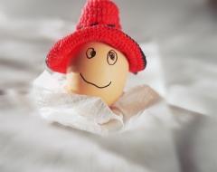 am0008-Mr Egg