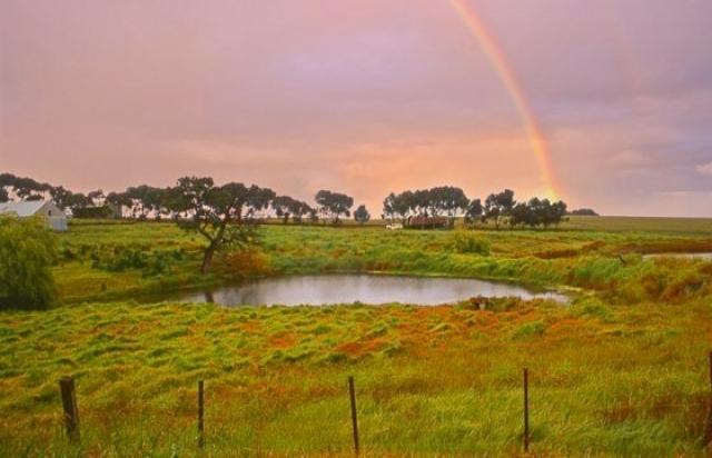 o0008-Rainbow Dream