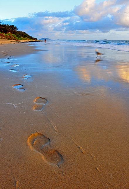 o0019-Footprints on the Sand